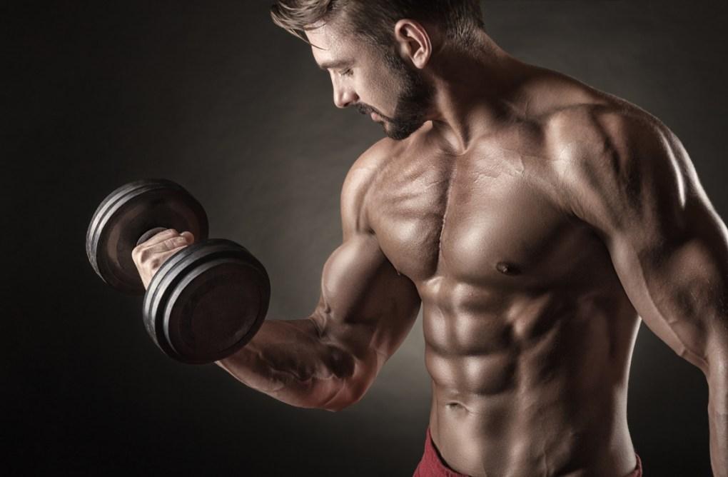 l'equipoise come una forma leggermente modificata di testosterone